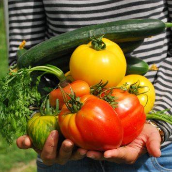 Co zrobić z nadmiarem warzyw?